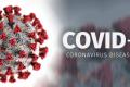 Covid - 19 - Tutorial